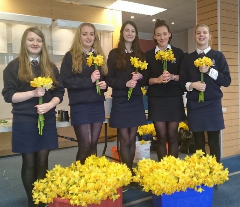 Ty students from 2014/15 volunteering for Daffodil Day